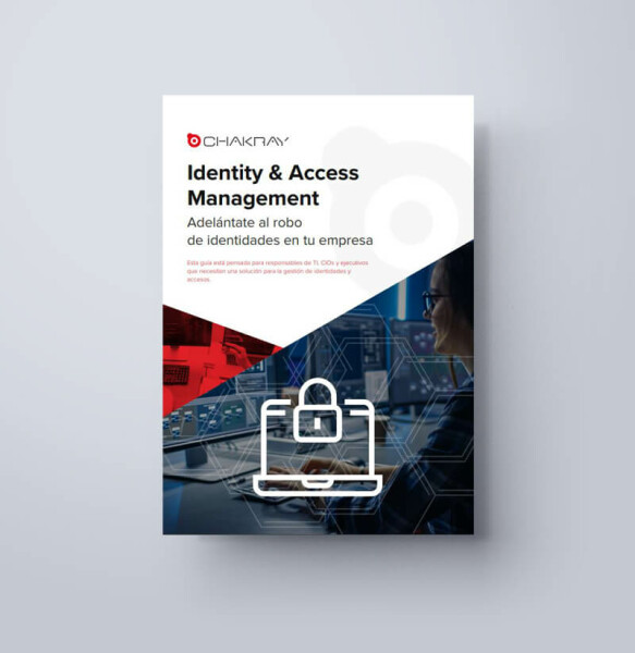 IDENTITY & ACCESS MANAGEMENT ebook