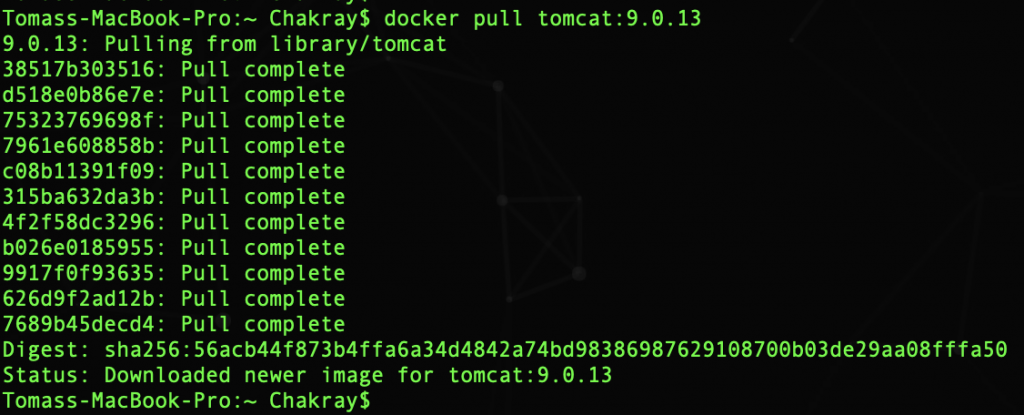 some index files failed to download. they have been ignored or old ones used instead. docker